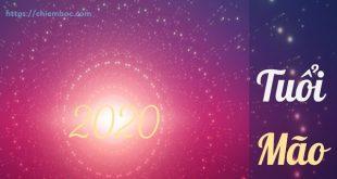 Sao hạn 2020 tuổi Mão ra sao, tuổi nạp âm nào được sao tốt chiếu, tuổi nào gặp hạn nặng trong năm Canh Tý
