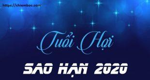Xem SAO HẠN 2020 tuổi Hợi: Chi tiết các tuổi Ất Hợi, Tân Hợi, Quý Hợi, Kỷ Hợi, Đinh Hợi