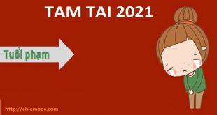 Tiếp tục phạm Tam Tai trong năm 2021, 3 con giáp Tị, Dậu, Sửu cần biết trước những điều gì?